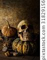 Still Life Skull and pumpkin on the timber. 31829156