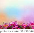 Abstract colorful oil painting red cosmos flower 31831844