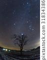 木材和冬季鑽石 31834386