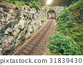 Railroad track in the middle of the forest 31839430