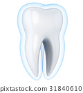 Abstract tooth protect 31840610