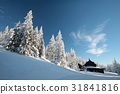 Cottage in the mountains 31841816