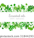 essential, oil, fragrance 31844293