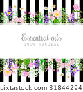 Popular essential oil plants label set on black  31844294