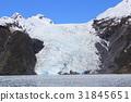 glacier, ocean, sea 31845651
