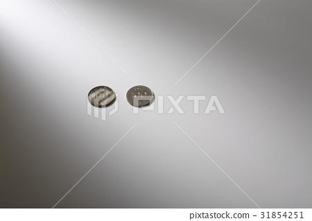 동전 31854251