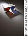 Stereoscopic glasses 31854252