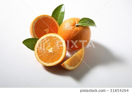 오렌지 31854264