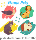 Bright images of domestic animals cat, snail dog 31856107
