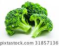 브로콜리, 야채, 채소 31857136