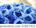 鮮花,手指 31857422