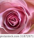 Romantic floral background. Flower. Rose closeup 31872671