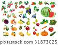 水果 蘋果 香蕉 31873025