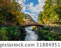 view of Shinkyo bridge in autumn season, Nikko  31884951