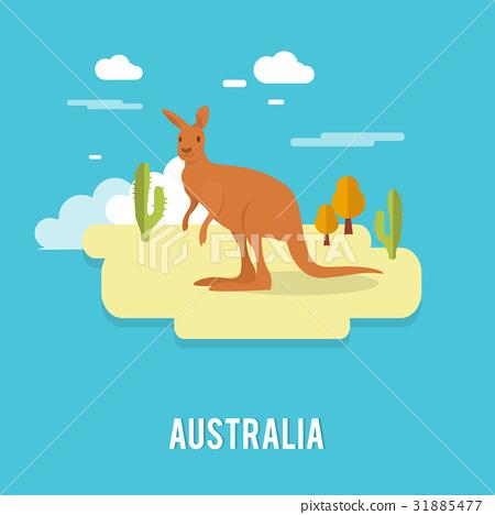 Kangaroo native Australian animal on desert  31885477