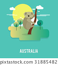 cute koala native animal in Australia 31885482