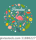 fruit, design, flamingoes 31886227