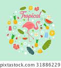 summer, fruit, vacation 31886229
