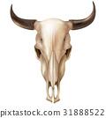 頭骨 奶牛 向量 31888522