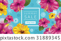 Summer Sale background 31889345