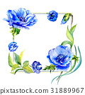 Wildflower anemone flower frame in a watercolor 31889967
