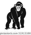 monkey, gorilla, animal 31913166