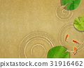 金魚 荷花葉 背景 31916462