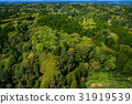 aerial, photography, shot 31919539