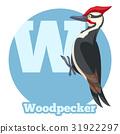 啄木鸟 鸟儿 鸟 31922297