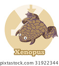 frog, animal, alphabet 31922344