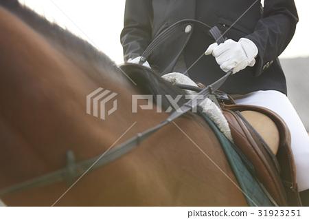 騎馬的婦女 31923251