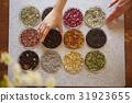 草本茶 茶葉 種類 31923655