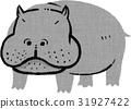 hippo, hippopotamu, hippopotamus 31927422