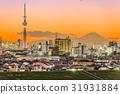 Tokyo Japan and Mt. Fuji 31931884