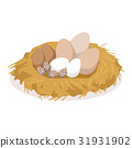 Nest with eggs of different birds, poultry 31931902