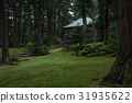 moss, pray, road 31935622