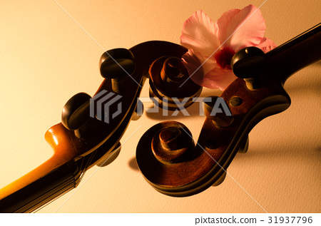 Two old violin slides, details in the morning ligh 31937796