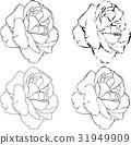 กุหลาบ,ดอกไม้,ไม้ 31949909