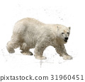 Polar Bear Watercolor 31960451