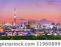 Tokyo and Fuji 31960899
