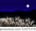 보름달과 억새 31975370