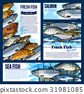 Vector posters or banners for fresh fish market 31981085