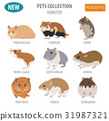 hamster icon pet 31987321