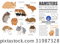 Hamster breeds icon set flat style isolated 31987328