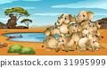 Many elephants living by the pond 31995999