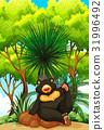 wildlife, animal, nature 31996492