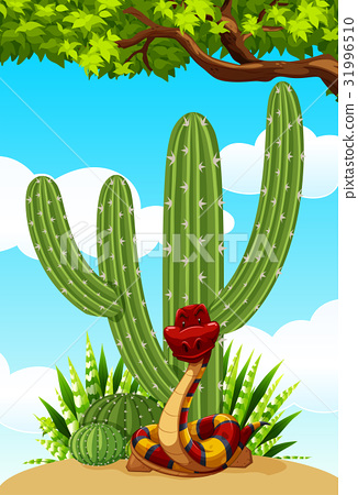 Cactus plant and snake on the ground 31996510