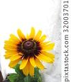 夏天 夏 花朵 32003701