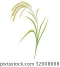 ear, of, rice 32008698