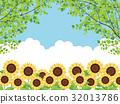 sunflower, sunflowers, bloom 32013786